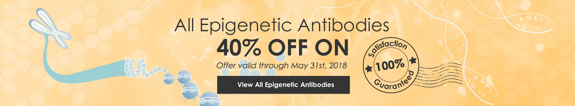 40% Off on All Epigenetic Antibodies, 100% Satisfaction Guaranteed, View the Full List of All Epigenetic Antibodies
